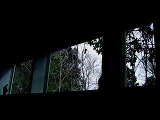 20090301カフェスローの窓より2