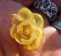 20090221 ロウバイの花弁