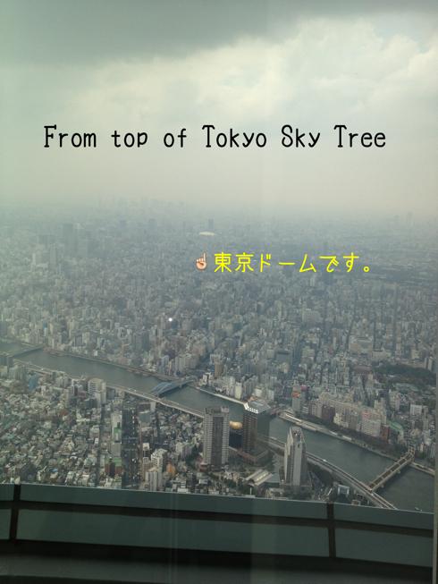東京ドームがみえる