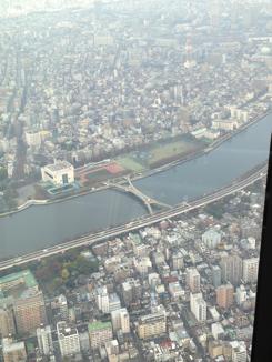 桜橋が見える
